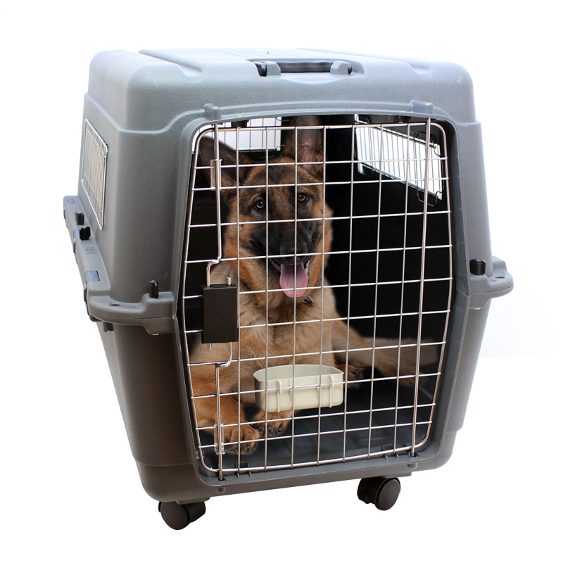 hund und katzen transportbox katzenbox hundebox grau 90. Black Bedroom Furniture Sets. Home Design Ideas